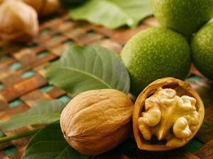 Польза от грецких орехов