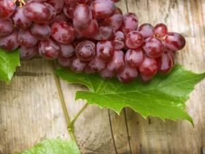 Виноград от разных заболеваний