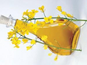 Рапсовое масло в медицине