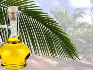 Показания к применению пальмого масла