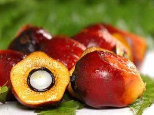 Кому нельзя применять пальмовое масло