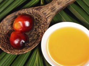 Область использования пальмового масла