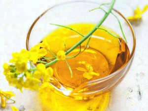 Применение рапсового масла