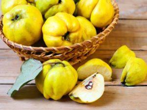 Вяжущий фрукт айва