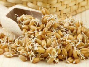 ПОльза зародышей пшеницы
