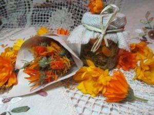 Особенности хранения цветков календулы