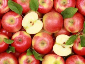 Особенности заготовки яблок