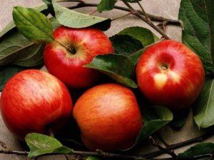 Применение яблок